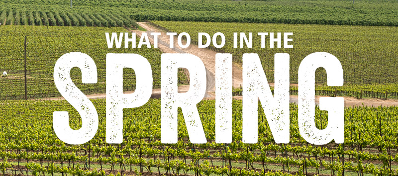 Yakima Valley Trip Ideas in the Spring